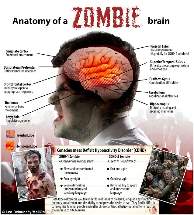 Diagnosis zombie: the science behind the undead apocalypse Real-Existence Installments of Body