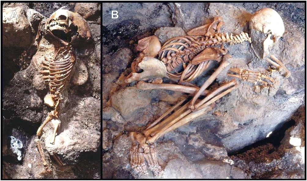 Did vesuvius victims' brains really boil as well as their skulls explode? the skulls